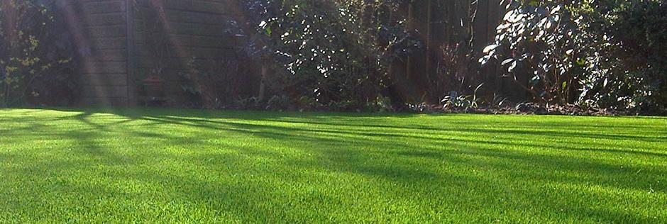 Prato sintetico e erba sintetica per giardino da arteco di for Prato sintetico